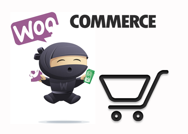 Woocommerce Development Company in Thane | Mumbai - Infiyug Technologies